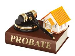 probate and elder law lawyer in miami